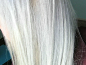 platinum after brunette